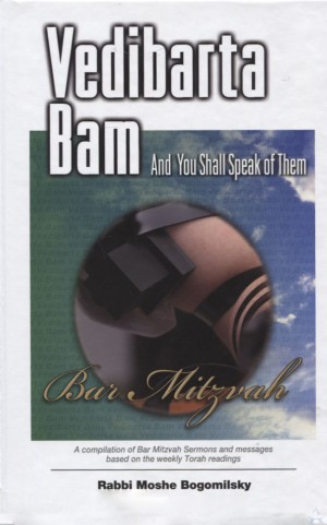 Vedibarta Bam Bar Mitzvah