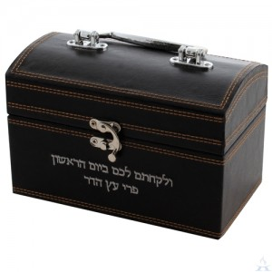 Esrog Box - Brown