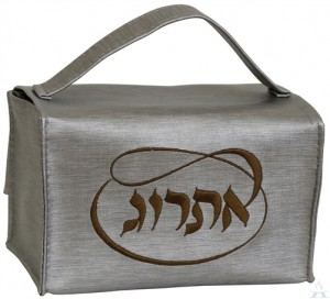 Esrog Box Vinyl Silver with Gold Embroidery