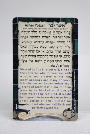 Al Hamichya/Asher Yotzar Card